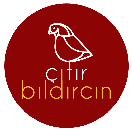 Logo with maroon background